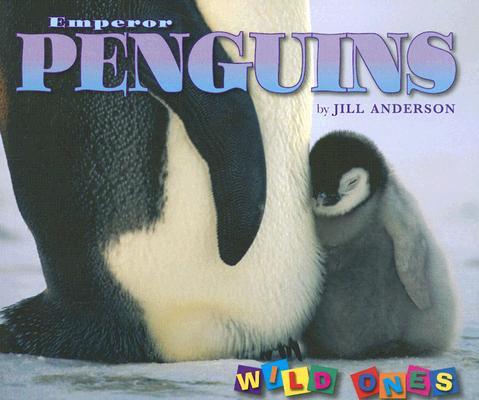 Emperor Penguins By Anderson, Jill